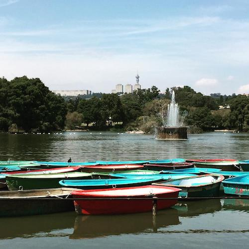 rowing boats on Zoo Lake Johannesburg