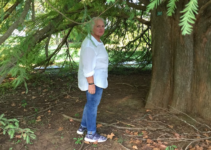 WholeHearted: Mad Old Woman Climbs a Tree